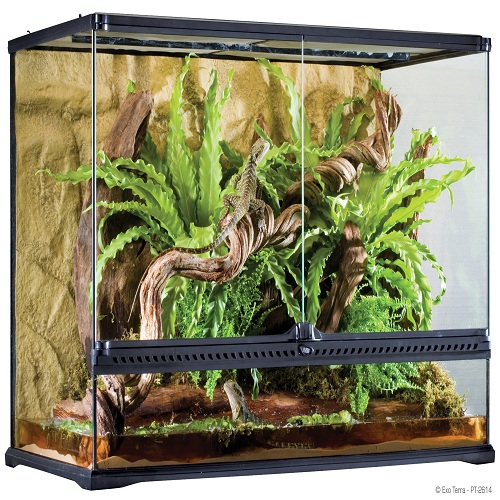 exo terra natural terrarium large tall reptile city. Black Bedroom Furniture Sets. Home Design Ideas